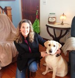 The word doesn't matter – New Beginnings Dog Training Blog Post