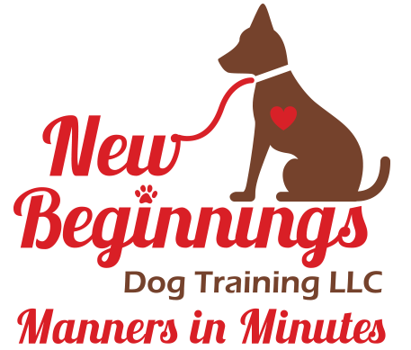 New Beginnings Dog Training LLC